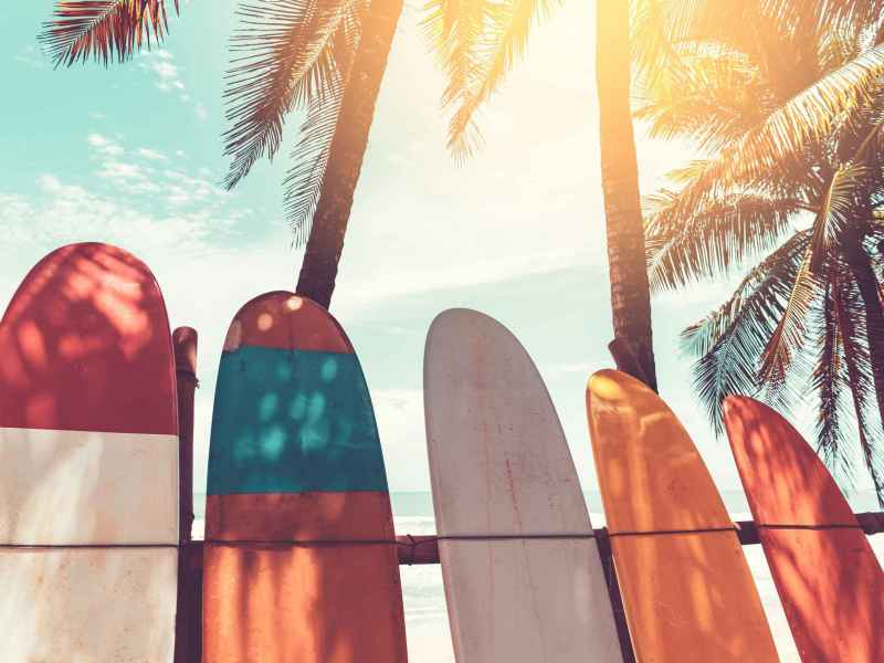 Catalyst Surf Rides of Successful Retail