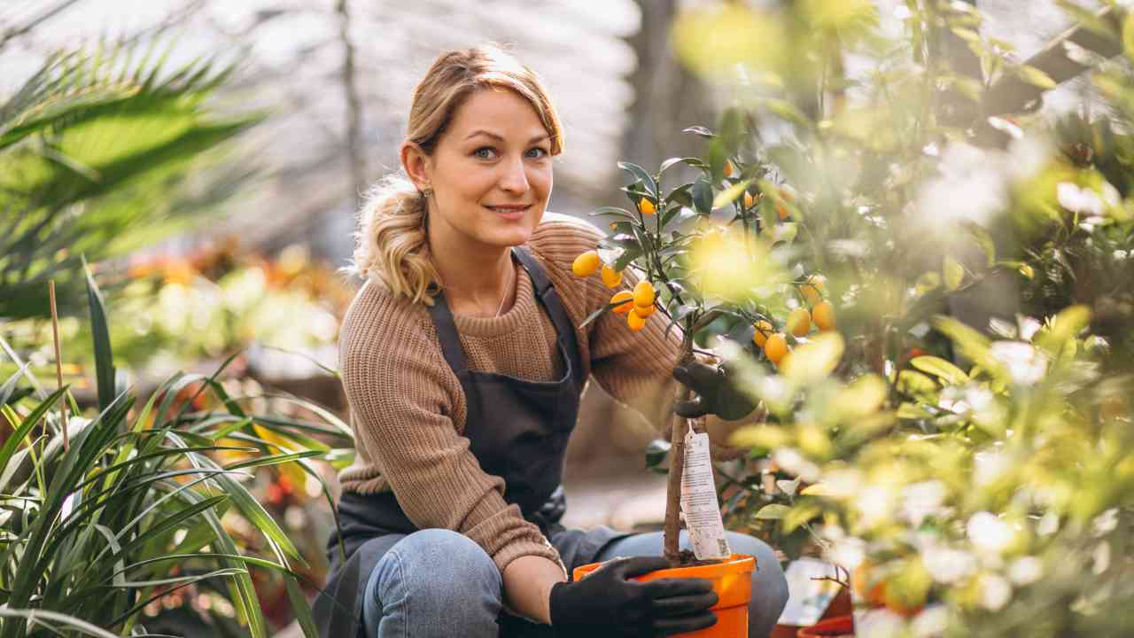 Female Retail grower with fruit plant - Trends and 5 Tips for Online Retailing